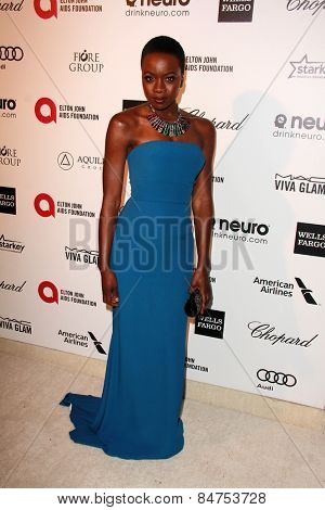 LOS ANGELES - FEB 22:  Danai Gurira at the Elton John Oscar Party 2015 at the City Of West Hollywood Park on February 22, 2015 in West Hollywood, CA