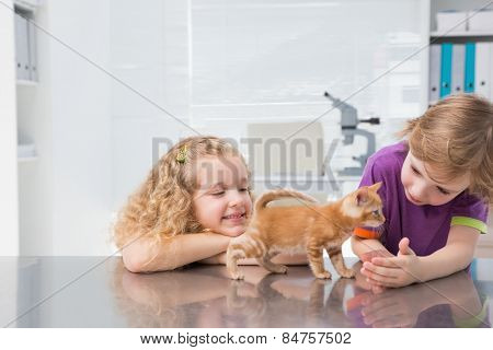 Smiling owners petting their cat in medical office
