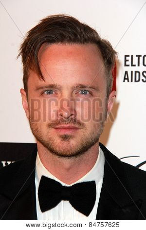 LOS ANGELES - FEB 22:  Aaron Paul at the Elton John Oscar Party 2015 at the City Of West Hollywood Park on February 22, 2015 in West Hollywood, CA