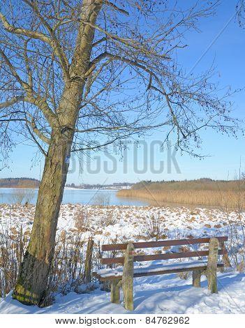 Lake Dreifelder Weiher,Westerwald
