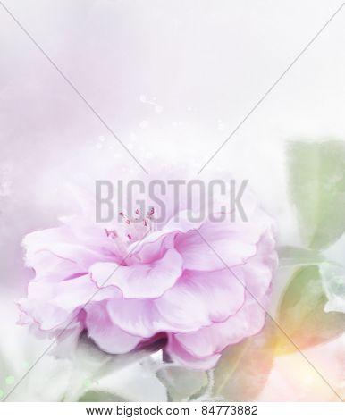 Digital Painting Of Pink Rose.Soft Focus