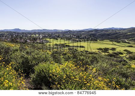 Spring meadows and wildflowers on the edge of suburban housing tracts in Thousand Oaks near Los Angeles, California.