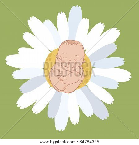 Vector Sleeping Newborn Baby