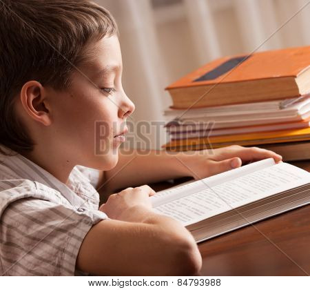 Boy reading book. Child education
