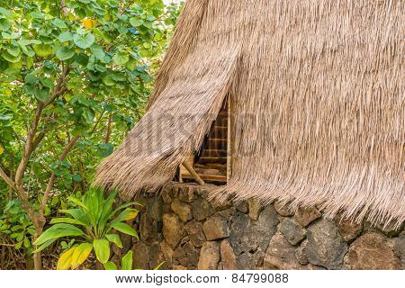 Palm thatched roof