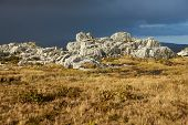 stock photo of falklands  - Outcrops of rock protruding through course grasses on Wireless Ridge above Stanley - JPG