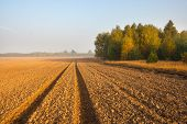 stock photo of plowed field  - plowed field with tractor traces and distant forest at sunrise - JPG