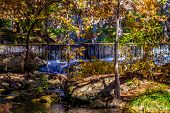 foto of crystal clear  - Large Cypress Trees with Stunning Fall Color Lining a Crystal Clear Texas Hill Country Stream with Picturesque Waterfall in Texas.