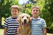 image of dog park  - Little boys with their dog in the park on a sunny day - JPG