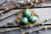 stock photo of pussy  - Bird colorful eggs in nest and pussy willow branches on wooden background - JPG