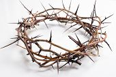 stock photo of thorns  - Crown of thorns on a white background Easter religious motif commemorating the resurrection of Jesus - JPG