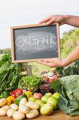 image of farmer  - Farmer selling his organic produce on a sunny day - JPG