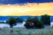 stock photo of steppes  - Early morning scene in steppe - JPG