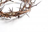 image of thorns  - Crown of thorns on a white background Easter religious motif commemorating the resurrection of Jesus - JPG