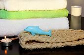 picture of bast  - Towel pile with bast and dolphin form soap in the shower - JPG