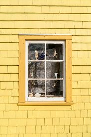 picture of shell-fishes  - Quaint old window decorated in a nautical theme with fish net - JPG