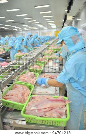 Can Tho, Vietnam - July 1, 2011: Workers Are Filleting Pangasius Catfish In A Seafood Factory In The