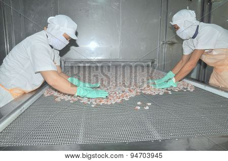 Nha Trang, Vietnam - March 5, 2012: Workers Are Arranging Shrimps In A Line To The Freezing Machine