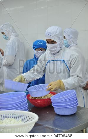 Vung Tau, Vietnam - December 9, 2014: Workers Are Classifying Octopus For Exporting In A Seafood Pro