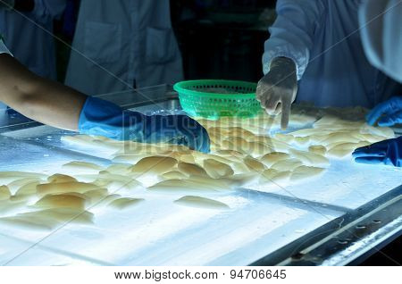 Phan Thiet, Vietnam - December 11, 2014:  Workers Are Testing The Color Of Squids For Exporting In A