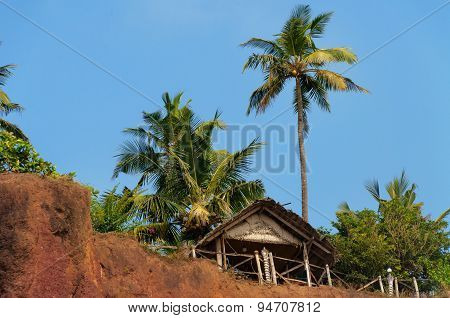 Tropical Summer Hut And  Palm Trees On A Clifftop