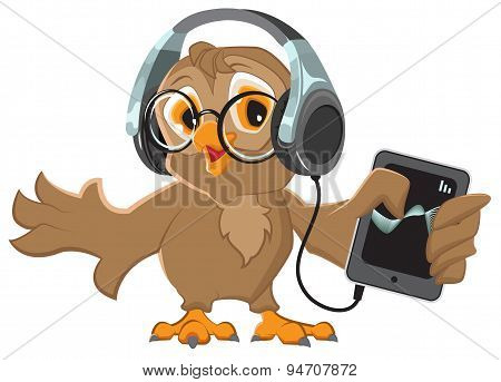 Owl with headphones listening to music