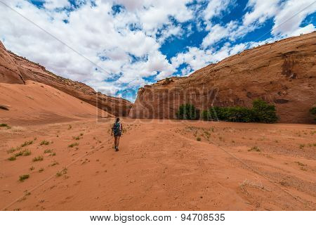 Hiker Backpacker Brimstone Gulch Dry Fork Narrows Of Coyote