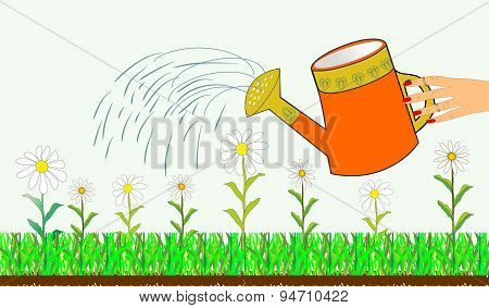 Hand watering can and flowers