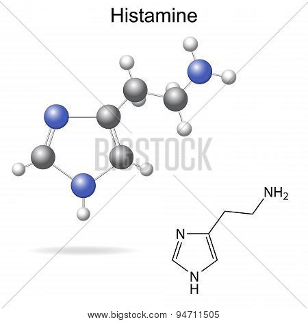 Model And Chemical Formula Of Histamine