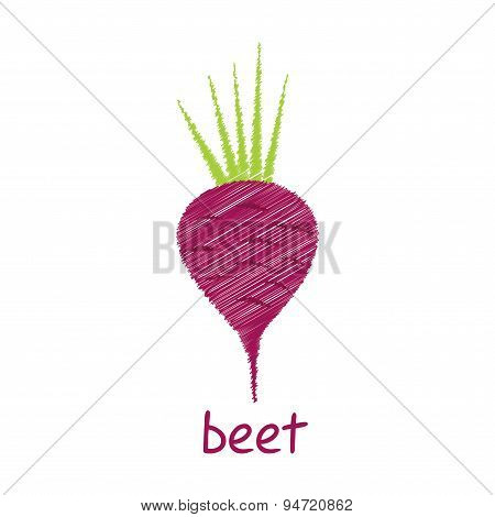 beet root design