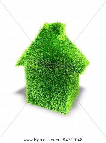 Green House Ecology Concept With Grass