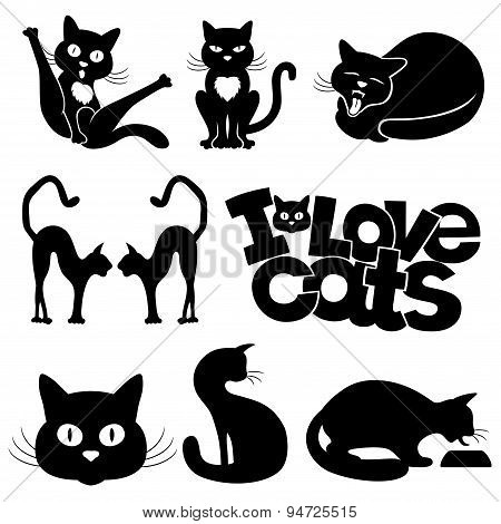 Icons of cats