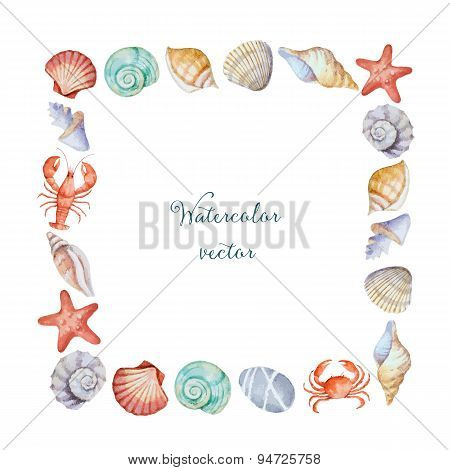 Watercolor Square Frame Of Sea Shells