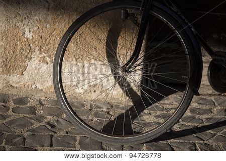 wheel of a bicycle