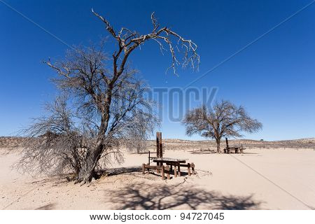 Stopover Rest Place In Kgalagadi Transfontier Park