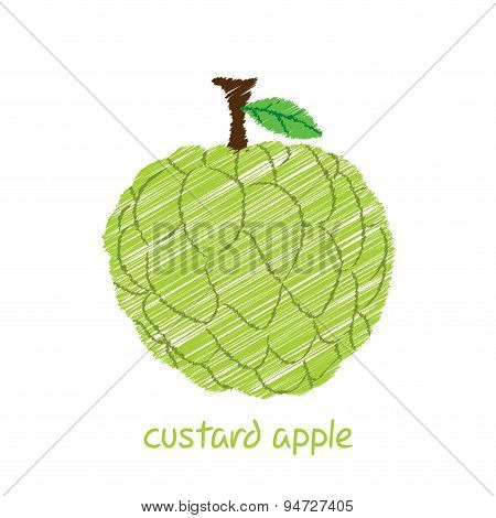 custard apple design