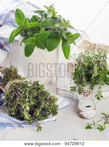 Fresh Herbs - Thyme And Oregano.