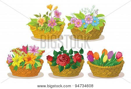 Baskets with flowers set