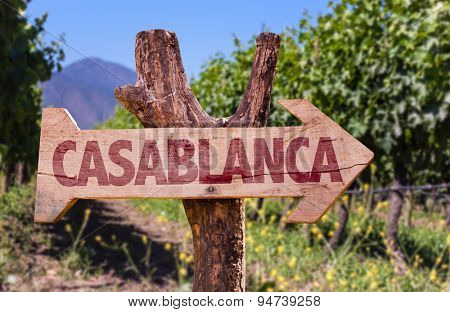 Casablanca wooden sign with winery background