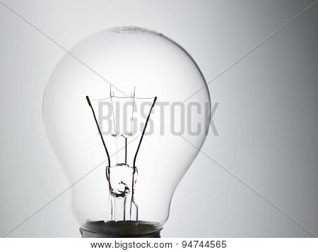 light bulb on the white background