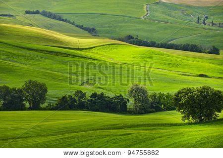 Lighting game on green tuscany hills