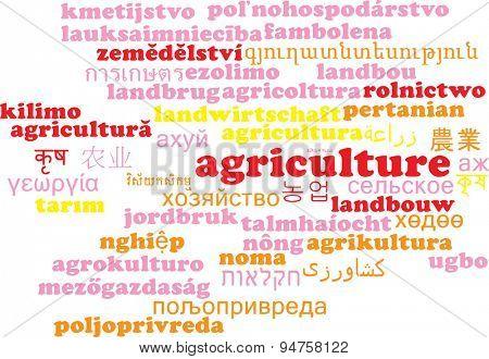 Background concept wordcloud multilanguage international many language illustration of agriculture
