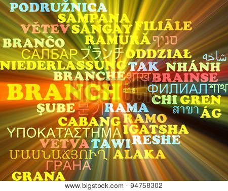 Background concept wordcloud multilanguage international many language illustration of branch glowing light