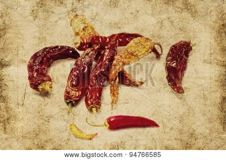 dried chili peppers in grunge and retro style
