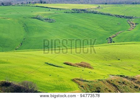 Hills In Italy