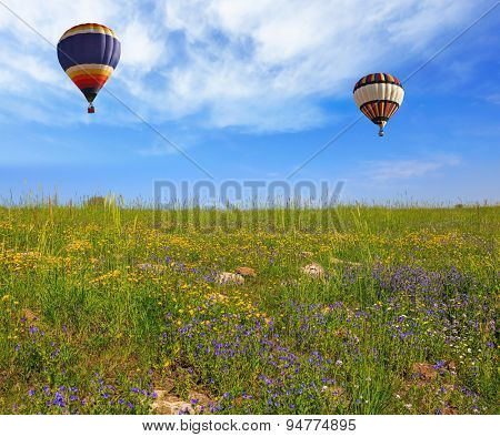 Flowering Golan Heights on a sunny day. Two huge and beautiful balloons fly over a flowering field