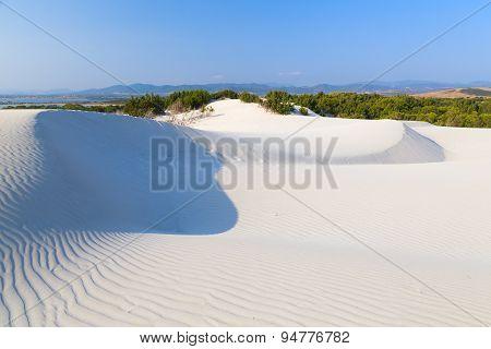 Dune of white sand