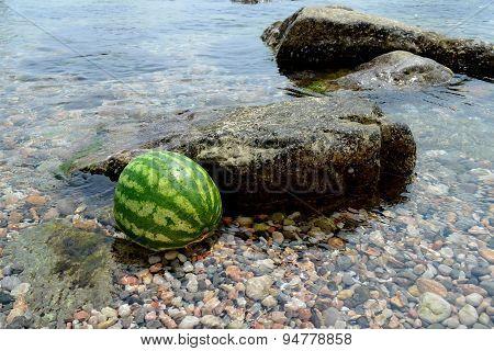 Water-melon In The Sea