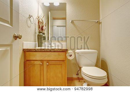 Classic Half Bathroom With Mirror.