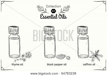 A set of essential oils in black and white style: thyme, black pepper, saffron.